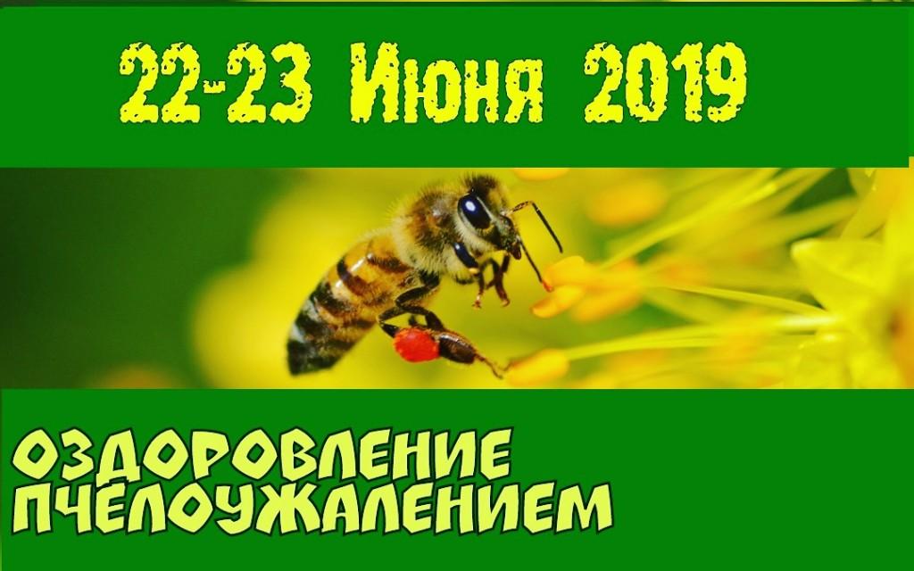 IMG_20190514_235622_410